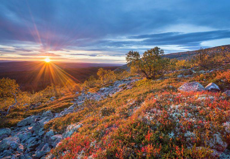 Soluppgång i Fulufjällets Nationalpark