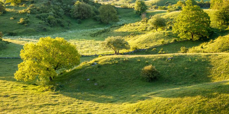 Brösarpsbackar i soluppgång