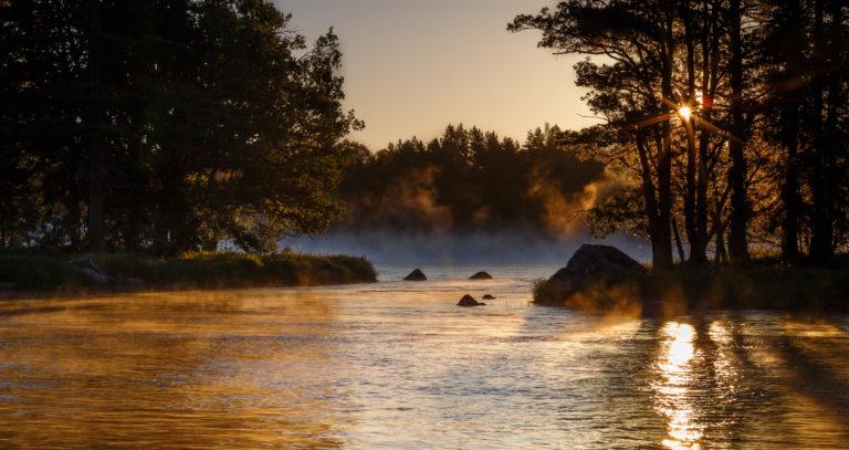 Gyllene morgon i Gysinge
